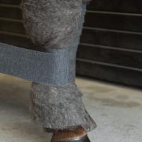Woolpad01